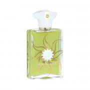 Amouage Sunshine Pour Homme Eau De Parfum 100 ml (man)